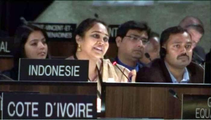 UNESCOમાં પાકિસ્તાનનું સૂરસૂરિયું થઈ ગયું, આ ભારતીય મહિલાએ બરાબર આપી ધોબીપછાડ
