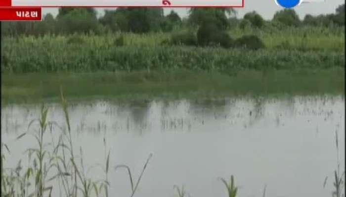 Patan Rain Farmers Loss