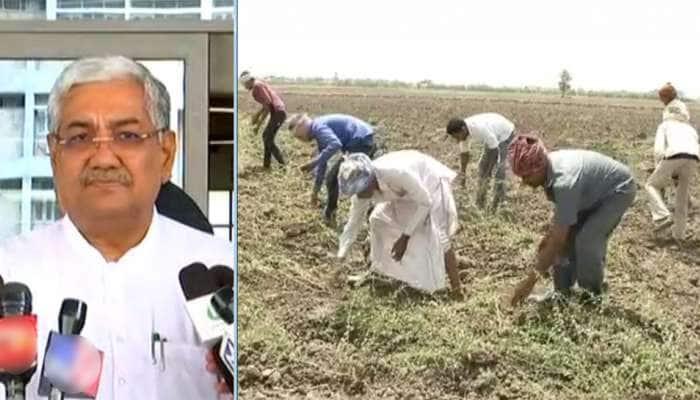 ભેજવાળી મગફળીને લઈને ટેન્શનમાં આવેલા ખેડૂતો માટે રાજ્ય સરકારે કરી મોટી જાહેરાત