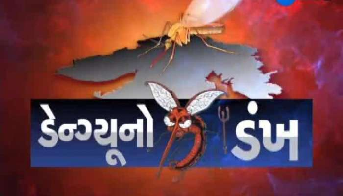 Vadodara: 953 Dengue Case positive in this month