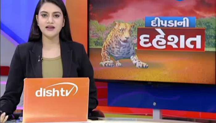 Leopard Attack On Woman In Amreli