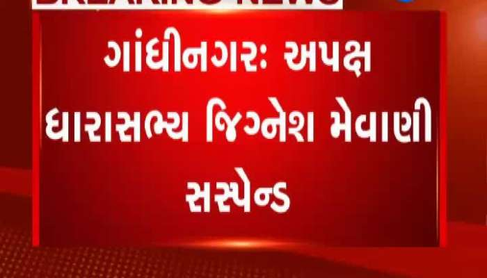 Independent MLA Jeevansh Mawani suspended till the end of the semester