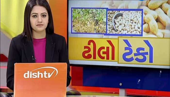 Peanuts Purchase: Only 5 Percent Farmer Purchased Peanuts In Morbi