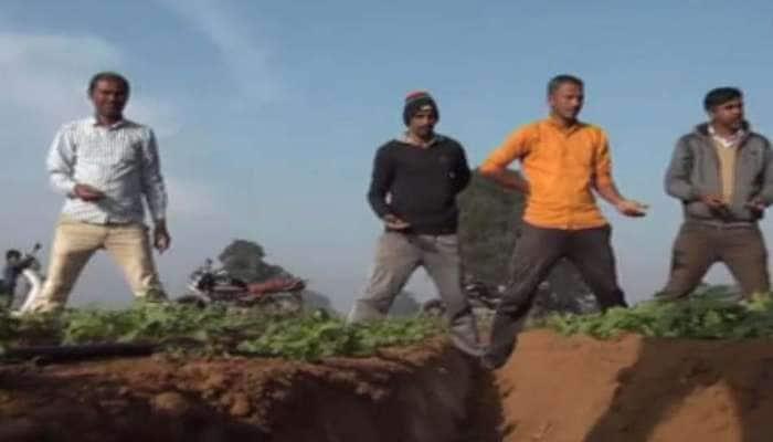 મોડાસા : 200 વિઘામાં વાવેલા બટાકા જમીનમાં જ કહોવાઈ ગયા, ખેડૂતો કફોડી હાલતમાં મુકાયા