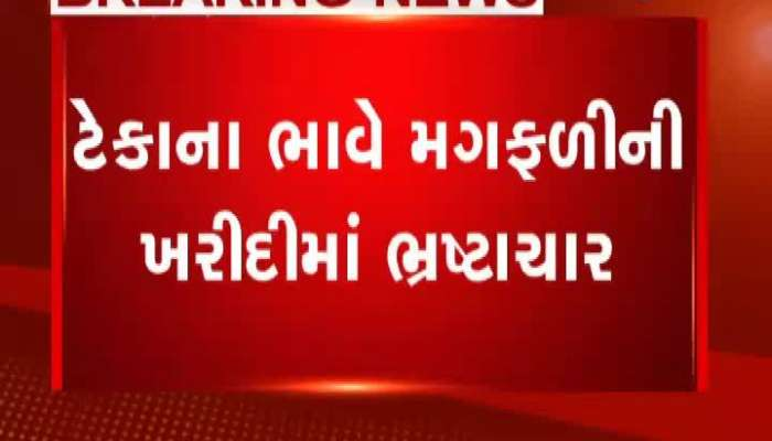 Problems With Farmers Of Palanpur For Selling Peanuts At Support Prices