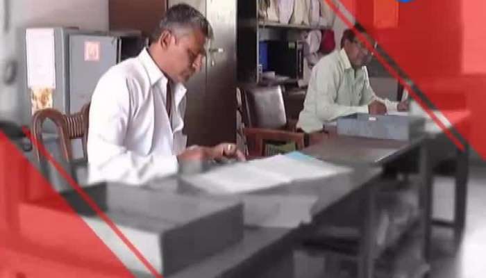 Farmers Happy With Affordable Price Of Peanuts In Gir Somnath