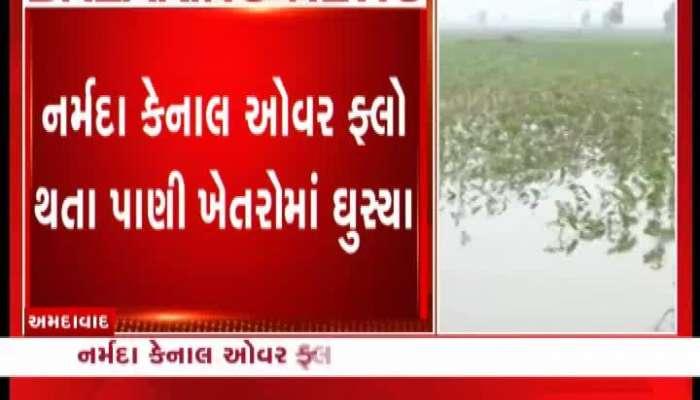 Narmada canal linkage, water destroy 600 vigha farming in Viramgam near Ahmedabad