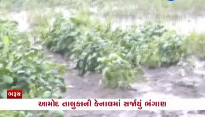 Bharuch Amod canal damaged watch video