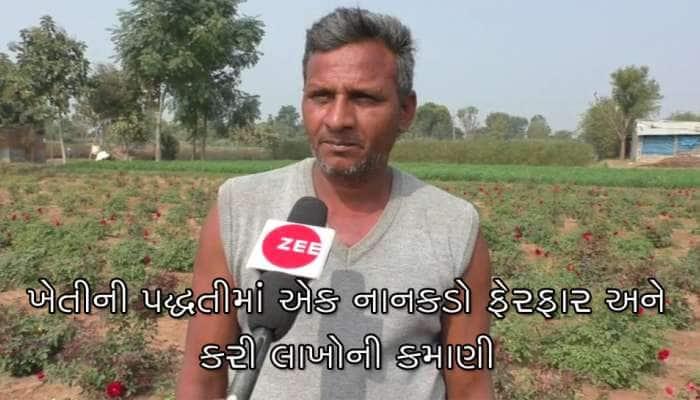 મહેસાણા: ખેડૂતે પોતાની પદ્ધતીમાં કર્યો નાનકડો ફેરફાર અને કરી લાખો રૂપિયાની કમાણી