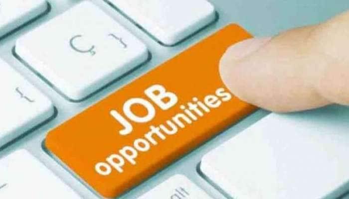Good News : દેશમાં ઉભી થઈ 14.33 લાખ નવી નોકરીઓ, જાહેર થયા આંકડા