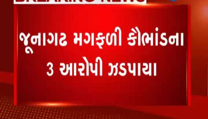 3 accused arrested in Junagadh groundnut scam