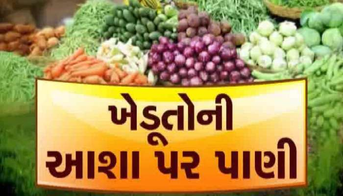 Farmers are disappointed over vegetable price