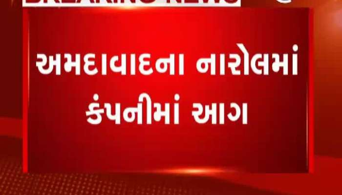 fire in Ahmedabad and surat's company