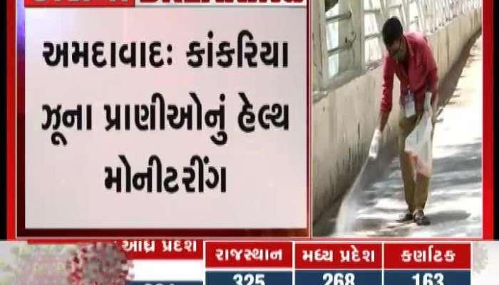 ahmedabad kankariya zoo sanitize in corona lockdown