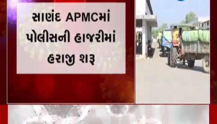 Auction Started In Presence Of Police In Sanand APMC
