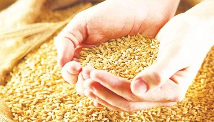 સરકાર દ્વારા આજથી ટેકાના ભાવે ઘઉંની ખરીદી શરૂ, બનાસકાંઠાના ખેડૂતોએ ન કરાવી નોંધણી