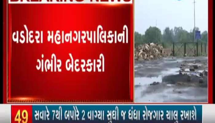 Vadodara: Disposed of Ganapati idols will not be disposed of even after 9 months