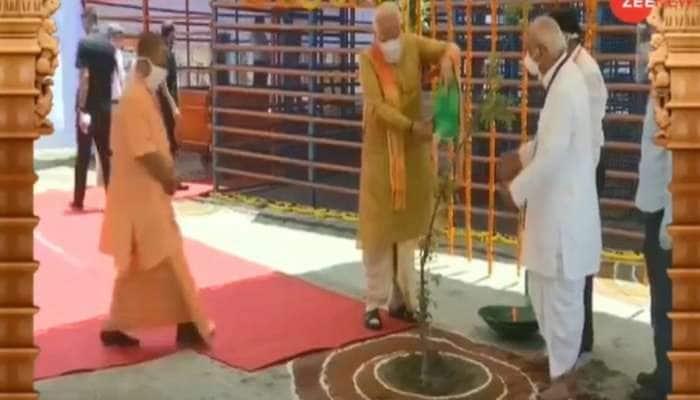 જાણો, શું છે 'પારિજાતના છોડ'નું મહત્વ, જેને PM મોદીએ રામ મંદિરમાં ઉગાડ્યું