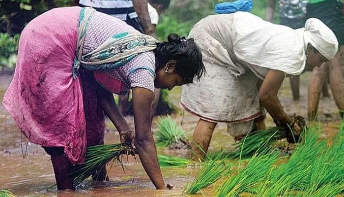 PM મોદી આજે ખેડૂતોને આપશે 'એક લાખ કરોડની ભેટ', ખાસ જાણો વિગતો