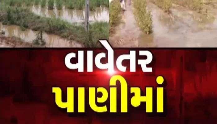 Zee 24 Kalak Special Conversation With Dwarka Farmers