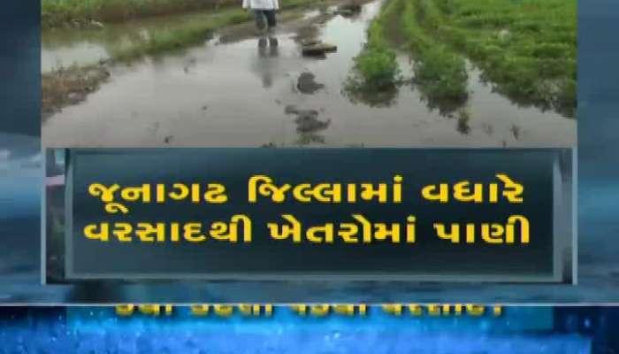 Zee 24 Kalak Special Conversation With Junagadh Farmers