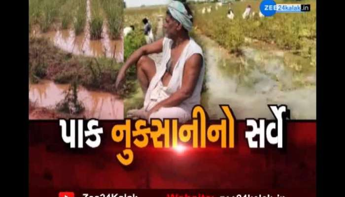 Crop Damage Survey: Discrepancies In Survey Work In Radhanpur