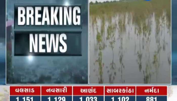 Rajkot: Heavy rains for five days flooded the fields