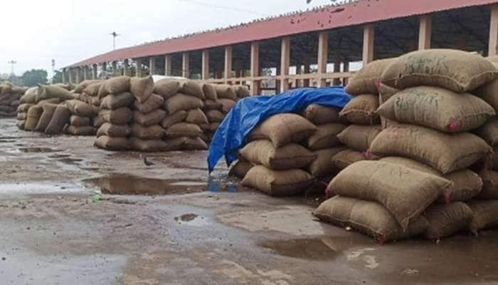 ભાવનગરમાં ધોધમાર વરસાદ: યાર્ડમાં મગફળી અને ડુંગળીની હજારો ગુણીઓ પલળી ગઇ