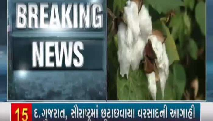 Trouble To Farmers Of Patan Due To Late Rains