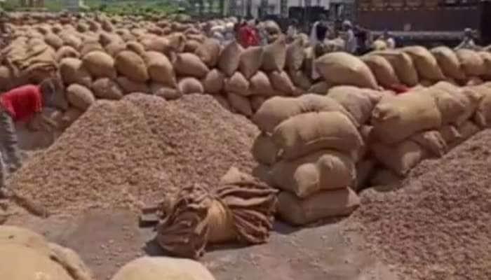 જામનગર : ટેકાના ભાવ કરતા વધારે કિંમત મળતા માર્કેટિંગ યાર્ડમાં કાગડા ઉડ્યા