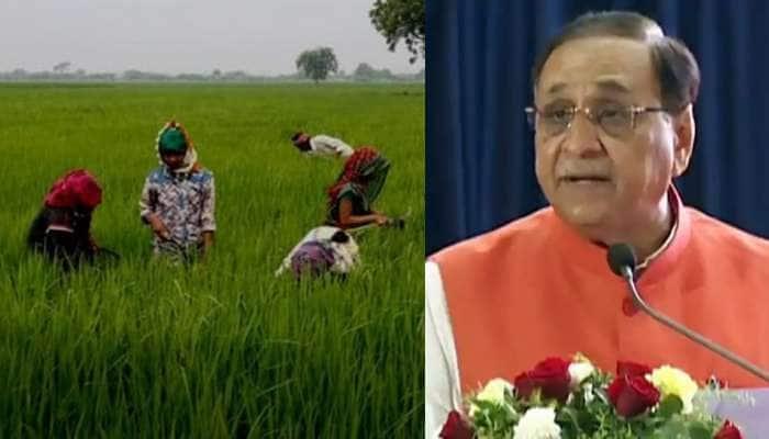 આફતના માવઠા સામે ગુજરાત સરકારે કરી ખેડૂતોને વળતરની જાહેરાત