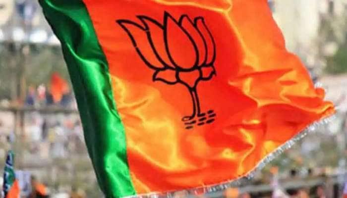 ગોવા જિલ્લા પંચાયત ચૂંટણીમાં BJPનો ભગવો લહેરાયો, કોંગ્રેસના સૂપડા સાફ