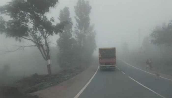 ગુજરાતમાં કોલ્ડવેવની શરૂઆત, નલિયામાં પારો 8 ડિગ્રીએ પહોંચ્યો