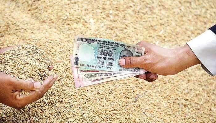 Cabinet: ખેડૂતોની આવક વધારવા માટે મોદી સરકારે લીધો મોટો નિર્ણય, જાણો વિગતો
