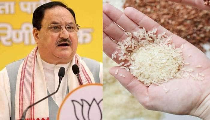 BJP નું મિશન બંગાળ! સમજો, આખરે શું છે ભાજપનો નવો પ્રયોગ 'એક મુઠ્ઠી ચાવલ'