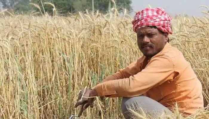 Tamilnadu assembly election 2021: આ એક બેઠક ખુબ ચર્ચામાં, 1000 ખેડૂતો નોંધાવશે ઉમેદવારી