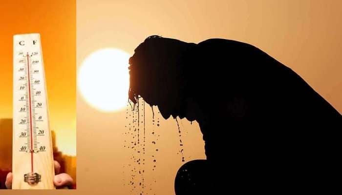 ગુજરાતમાં જામ્યો ઉનાળો: જાણો ક્યાં કેટલું છે તાપમાન, એપ્રિલથી જોર ગરમીનું જોર વધશે