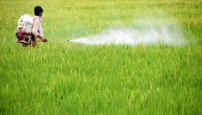 PICS: મોંઘીદાટ દવાઓના બદલે ખેતીમાં છાશનો આ રીતે કરો ઉપયોગ, અઢળક ફાયદા જાણીને દંગ રહી જશો