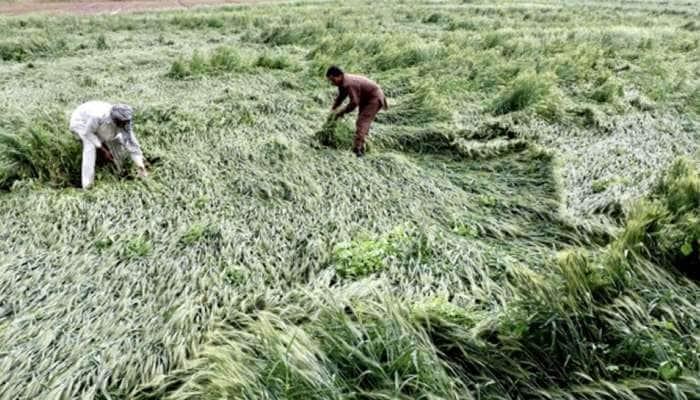 GUJARAT: ખેડૂતો માટે કોરોના બાદ હવે કમોસમી વરસાદનાં માઠા સમાચાર, જાણો ક્યાં આવશે?