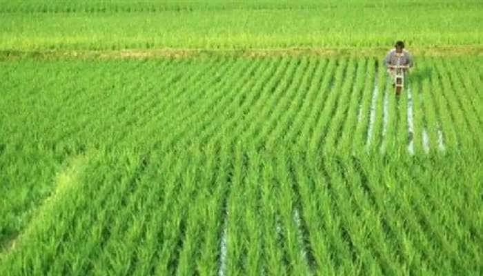 અરવલ્લી જિલ્લાના ખેડૂતોને થશે મોટો લાભ, મુખ્યમંત્રીએ ઉદ્દવહન સિંચાઇ યોજનાને આપી મંજૂરી