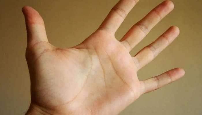 Palmistry: જો હથેળી પર આ નિશાન છે તો તમે કરશો વિદેશ યાત્રા, જીવનમાં નહીં આવે પૈસાની કમી
