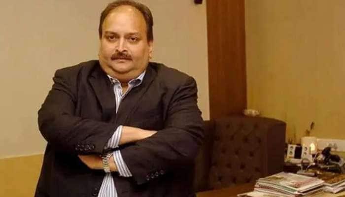 Mehul Choksi હજુ પણ ભારતીય નાગરિક, ભારતે ડોમિનિકા કોર્ટમાં આપ્યું એફિડેવિટ