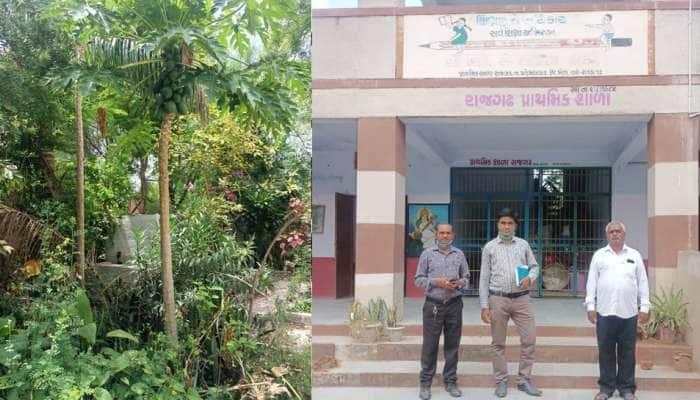 ખેડાની એક શાળાના અનોખો અભિગમ, બાળકો માટે તૈયારી કરાયુ કુદરતી વાતાવરણ