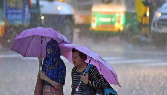 પાટણમાં આવ્યા નવા નીર, ઉપરવાસમાં ભારે વરસાદ બાદ જિલ્લામાં સર્જાયા આહલાદક દ્રશ્યો
