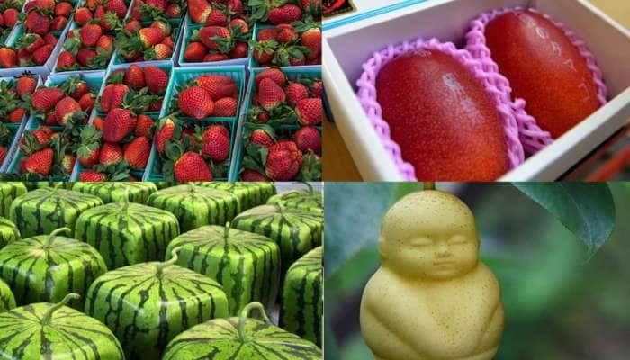 Luxury Fruits: આ છે દુનિયાના સૌથી મોંઘા ફળ, દ્રાક્ષના એક દાણાની કિંમત 35 હજાર રૂપિયા