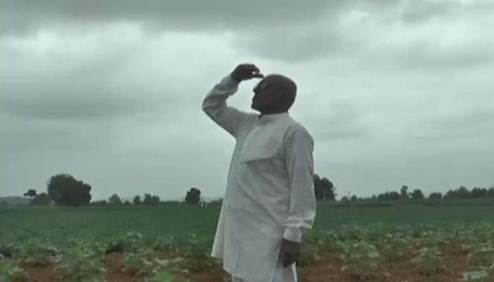 Banaskantha મા વરસાદના અભાવે વલખા મારી રહ્યા છે ખેડૂતો, પાક બળી જવાની તૈયારીમાં