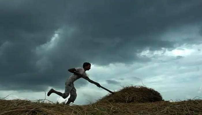 આખું ગુજરાત કોરું ધાકોર, 7 વર્ષનો સૌથી ઓછો વરસાદ પડ્યો, હજી પણ કોઈ આશા નથી