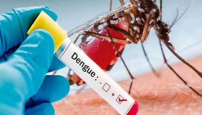 Dengue એ 9 વર્ષની બાળકીનો લીધો ભોગ, લોકોમાં ભયનો માહોલ