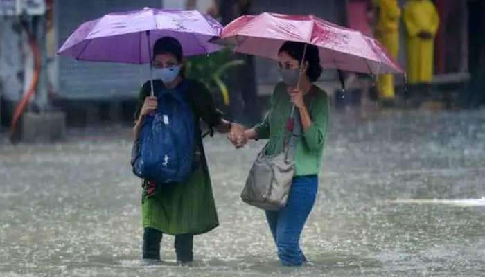 રાજ્યના 115 તાલુકામાં નોંધાયો વરસાદ, હવામાન વિભાગની આગાહી વચ્ચે હજુ પણ 20 ટકા વરસાદની ઘટ