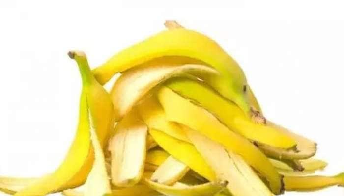 કેળાની છાલ ન ફેંકશો: સોનાથી પણ કિંમતી છે કેળાની છાલ, જલદી જાણીલો આ ફાયદા
